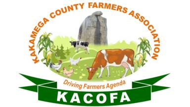 KaCoFa Logo