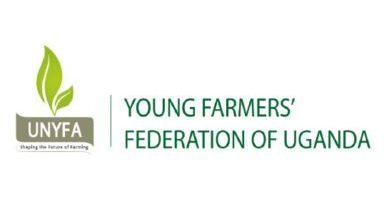 UNYFA Logo