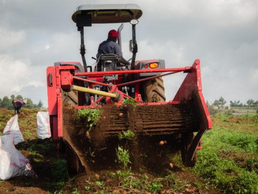 Beginn der voll-mechanisierten Ernte